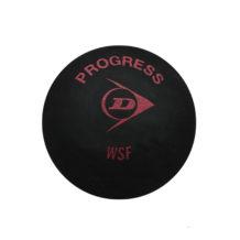http://wigmoresports.co.uk/product/dunlop-progress-1-ball-box/