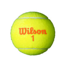 http://wigmoresports.co.uk/product/wilson-starter-game-ball-orange/