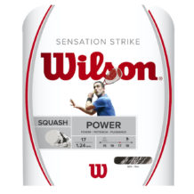 https://wigmoresports.co.uk/product/wilson-sensation-strike-10m-set-white/